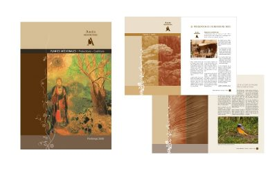 Ariès Herboristerie, rapport annuel